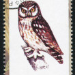 Owl stamp — Stock Photo #35785561