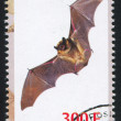 Bat stamp — Foto Stock