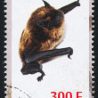 Bat stamp — Stock Photo #35785687