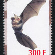 Bat stamp — Stock Photo