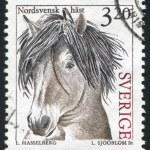 Постер, плакат: North sweden horse