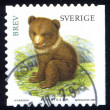 Stamp Bear — Stock Photo