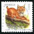 Stamp Lynx — Stock Photo