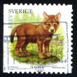 Stamp Wolf — Stock Photo