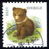 Stamp Bear — Stock Photo