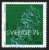 Waterways of Sweden — Stock Photo