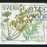 Постер, плакат: Sweden Dill