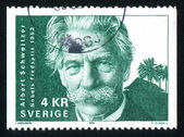 Albert Schweitzer — Stock Photo