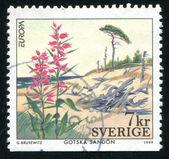 Gotska Sandon National Park — Stock Photo