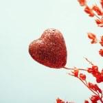 Heart of love — Stock Photo #18313283