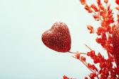 Heart of love — Stock Photo
