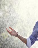 Rain in spring — Stock Photo