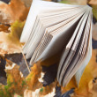 Autumn book — Stock Photo