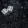 Gambling dices under the rain — Stock Photo