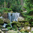 Stock Photo: Mountain waterfall in the green wild forest