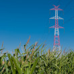 Pylon and transmission power line — Stock Photo #29991581