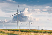 Wind turbine farm on rural terrain — Stock Photo