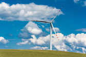 Wind farm on rural terrain — Stock Photo