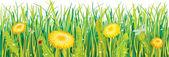 Maskrosor i gräset — Stockvektor