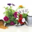 Slow-release Fertilizer with garden tools — Stock Photo