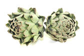 Two whole artichokes — Stock Photo