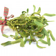 Mistletoe with berries and ribbon — Foto de Stock