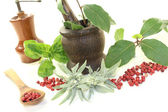 Laurel, sage and basil with Pepper grinder, mortar — Foto Stock
