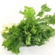 Turnip greens — Stock Photo