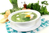 Herb soup — Stock Photo