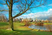 Green park near sea front — Stock Photo