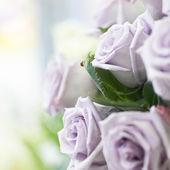 Schöner rosenstrauss — Stockfoto