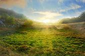 Green field — Photo