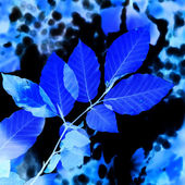 Abstract blue leaves — Stock Photo