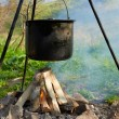 Pot boiling on the fire — Stock Photo