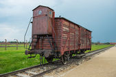 Holocaust Death Camp cattle car train — Stock Photo