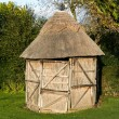 Thatched Shed — Foto Stock
