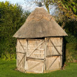 Thatched Shed — Stock Photo