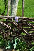 Garden bench in rural landscape — Stock Photo
