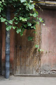 Old house covered with grape plant and ivy — Stock Photo