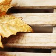 Autumn yellow maple leaf on the wooden desk — Stock Photo