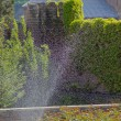 Royalty-Free Stock Photo: Park irrigation