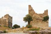 Ruins of ancient Halicarnassus — Stock Photo