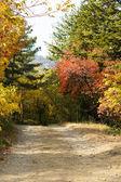 Herbstliche park — Stockfoto