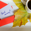 Autumn time: cup of tea — Stock Photo