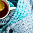 Cup of hot tea in the cold time — Stockfoto