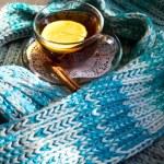 Hip tea with lemon — Stock Photo #40123261