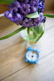 Spring time indoor — Stock Photo