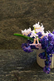 Hyacinth flowers — Stock Photo