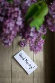 淡紫色的花,插在花瓶里 — 图库照片
