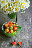 Sweet cherries and daisy flowers — Stock Photo